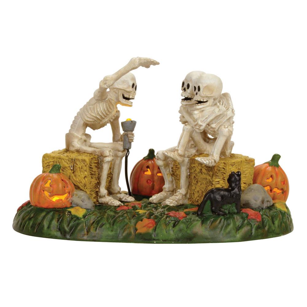 Scary Skeleton Stories