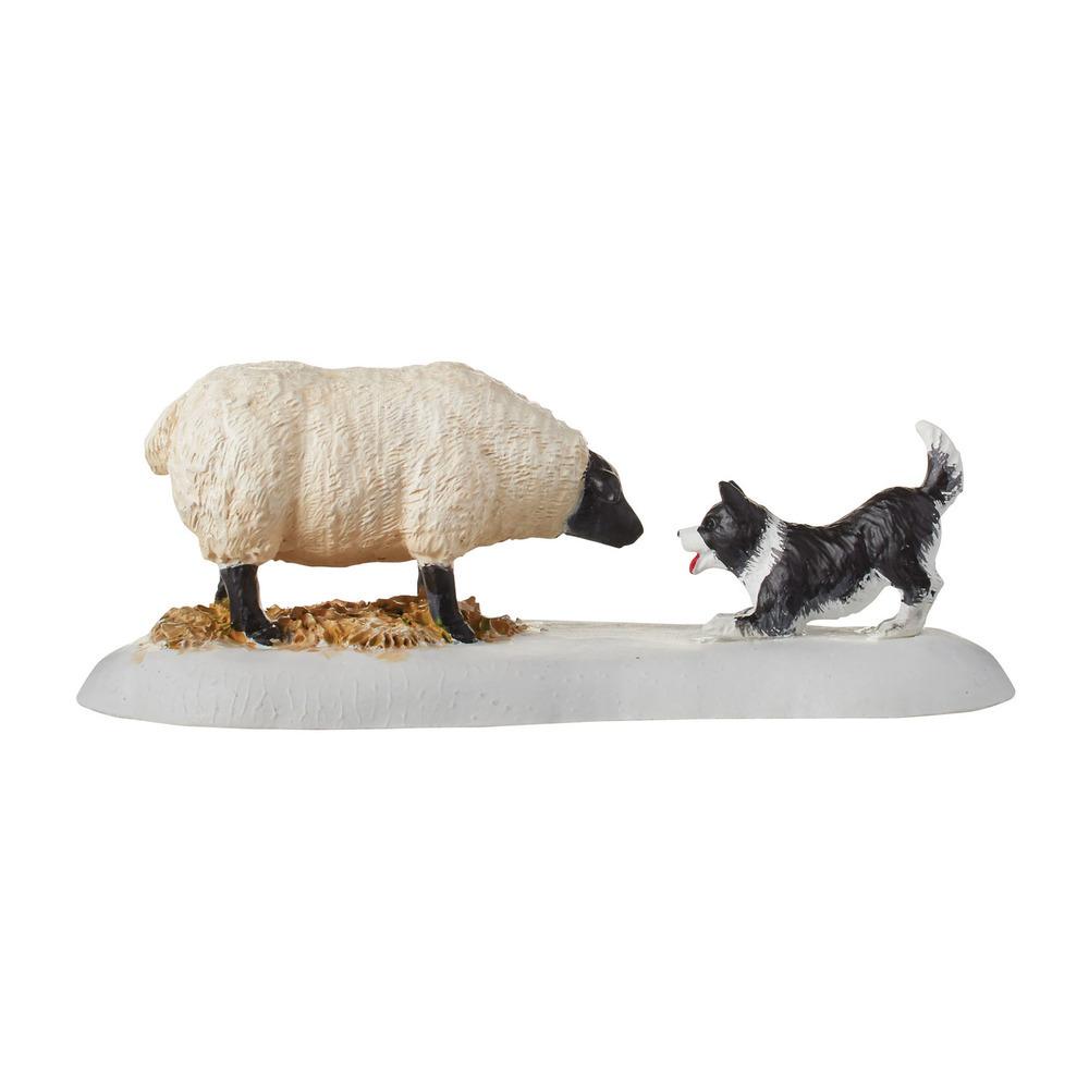 Mistletoe Farm Sheepdog Fun