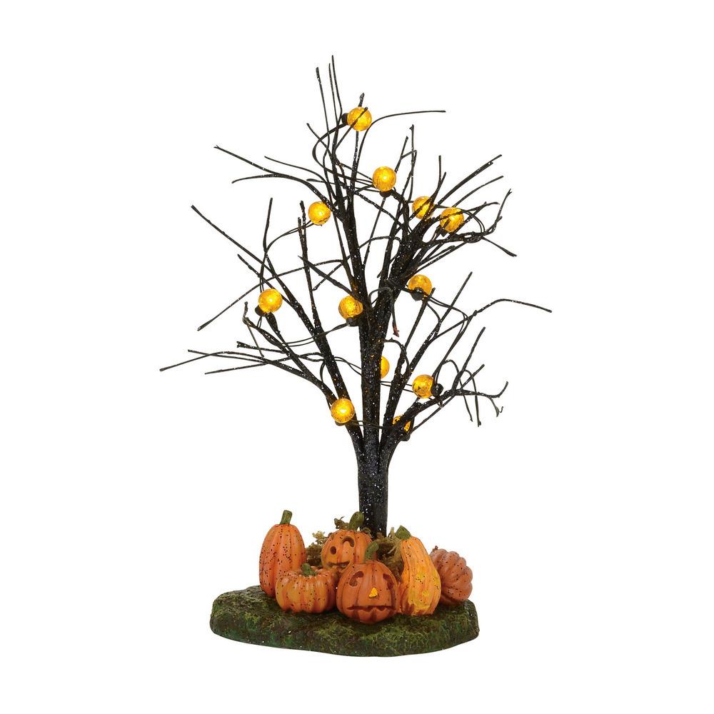 Jack-O-Lantern Tree