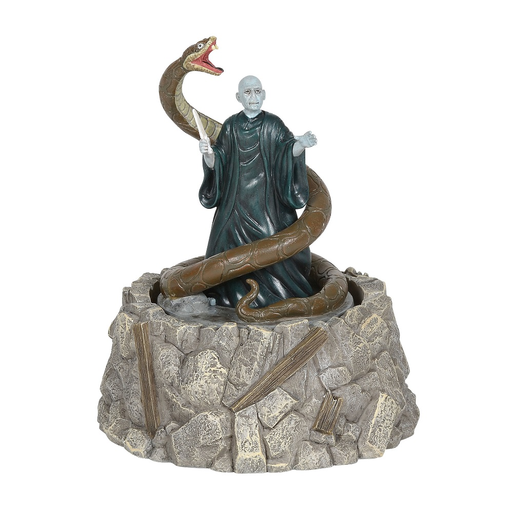 Lord Voldemort & Nagini
