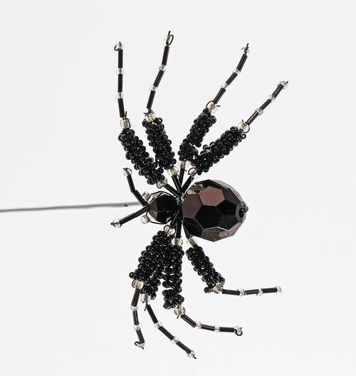 Kingdom Spider Clip